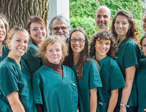 AGA des Acupuncteurs Associés en Grossesse et Accouchement